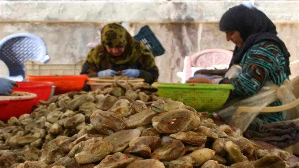 المتبل والصلصة والصعتر والمكدوس والمربيات.. اللبنانيون يعودون للأكل البيتي الآمن والأوفر (الأخبار)